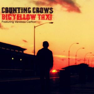 Big Yellow Taxi [radio edit]